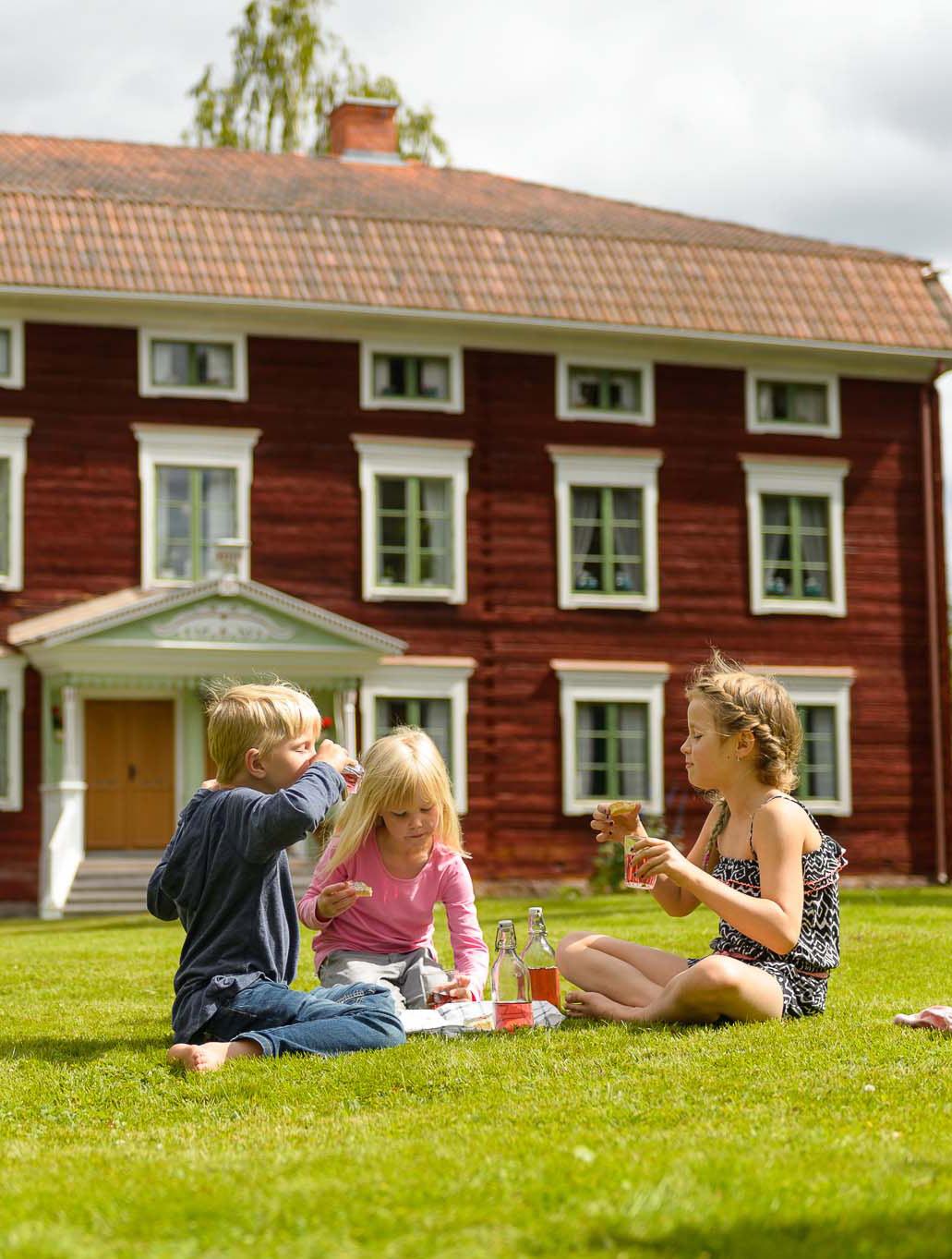 Barnens Hälsingland vid Jon-Lars Hälsingegård Foto: Maria G Nilsson