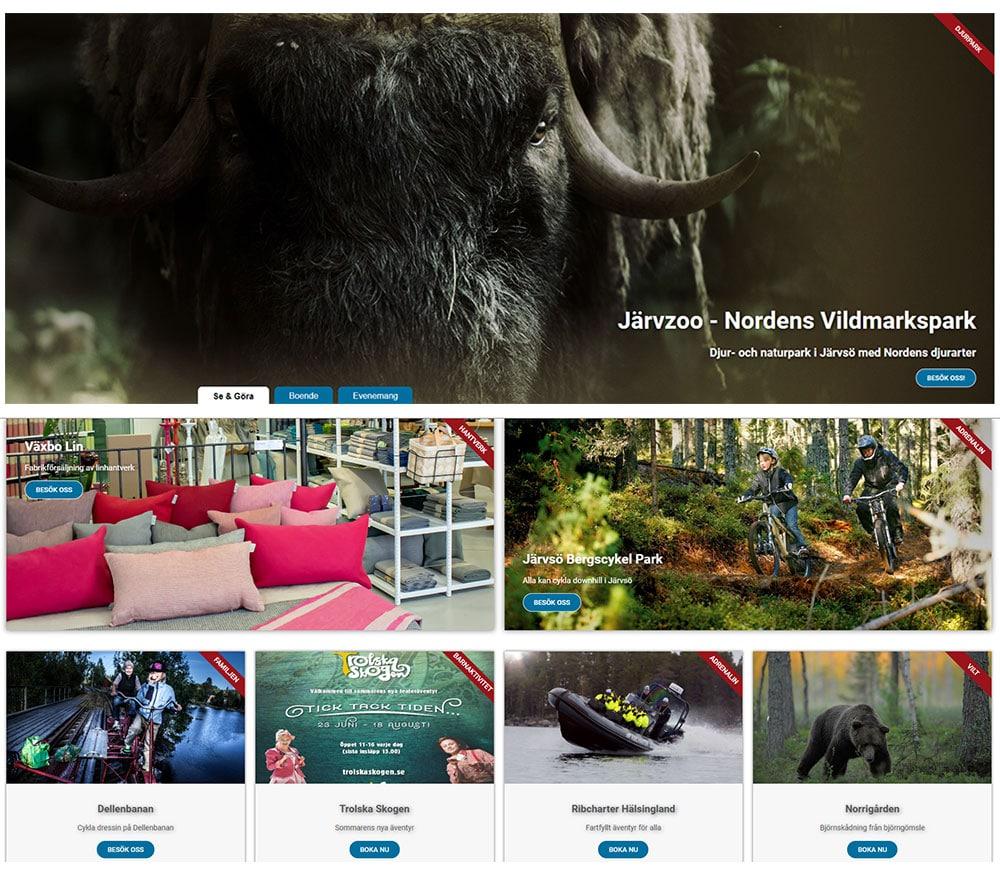 banner_annons hälsingland